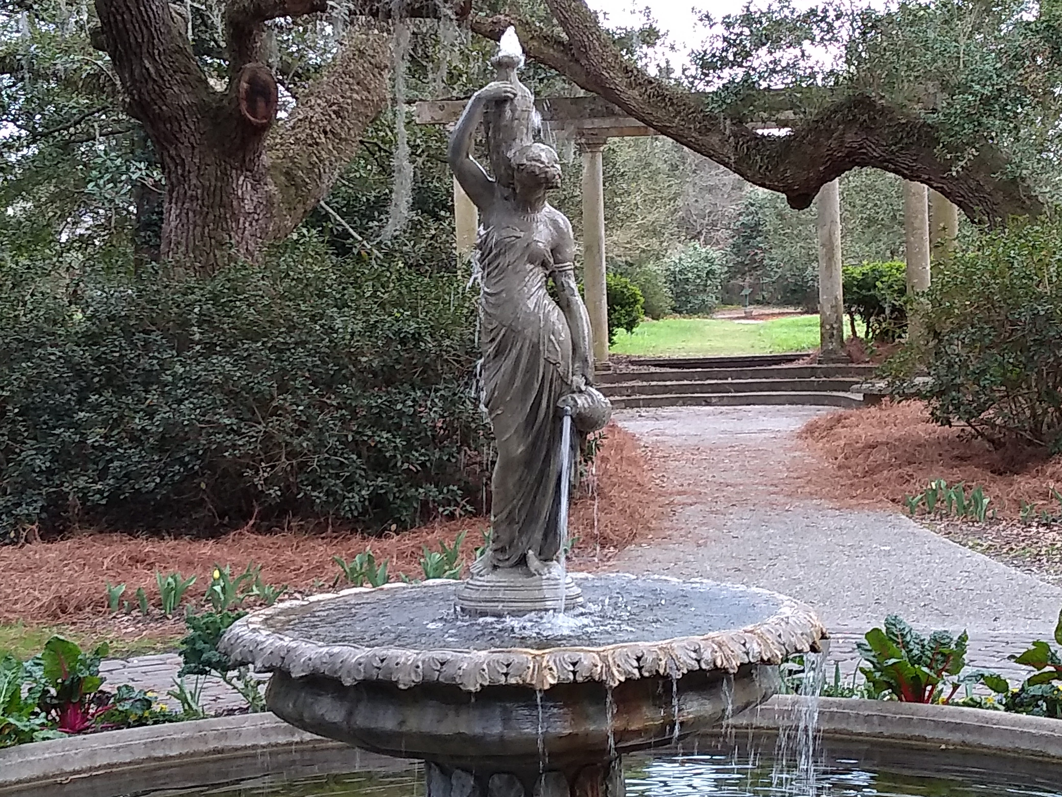 "You've probably seen Arlie Gardens on TV. Wilmington is a popular place for filming movies and series. ""Dawson's Creek"" and ""One Tree Hill"" were made in Wilmington; key episodes in both were filmed at Arlie Gardens."