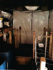 Police photographs of the marijuana grown operation inside Paul Koren's Miami Township home.