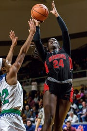 Southfield A&T's Alexis Johnson averaged a team-high 19.2 points and 8.4 rebounds, helping her team to the Division 1 state final.