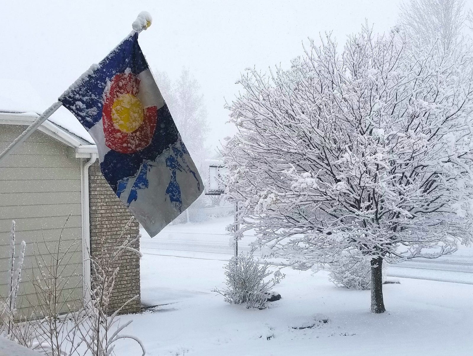 Scenes from the April 10, 2019 snowstorm in Fort Collins and Northern Colorado