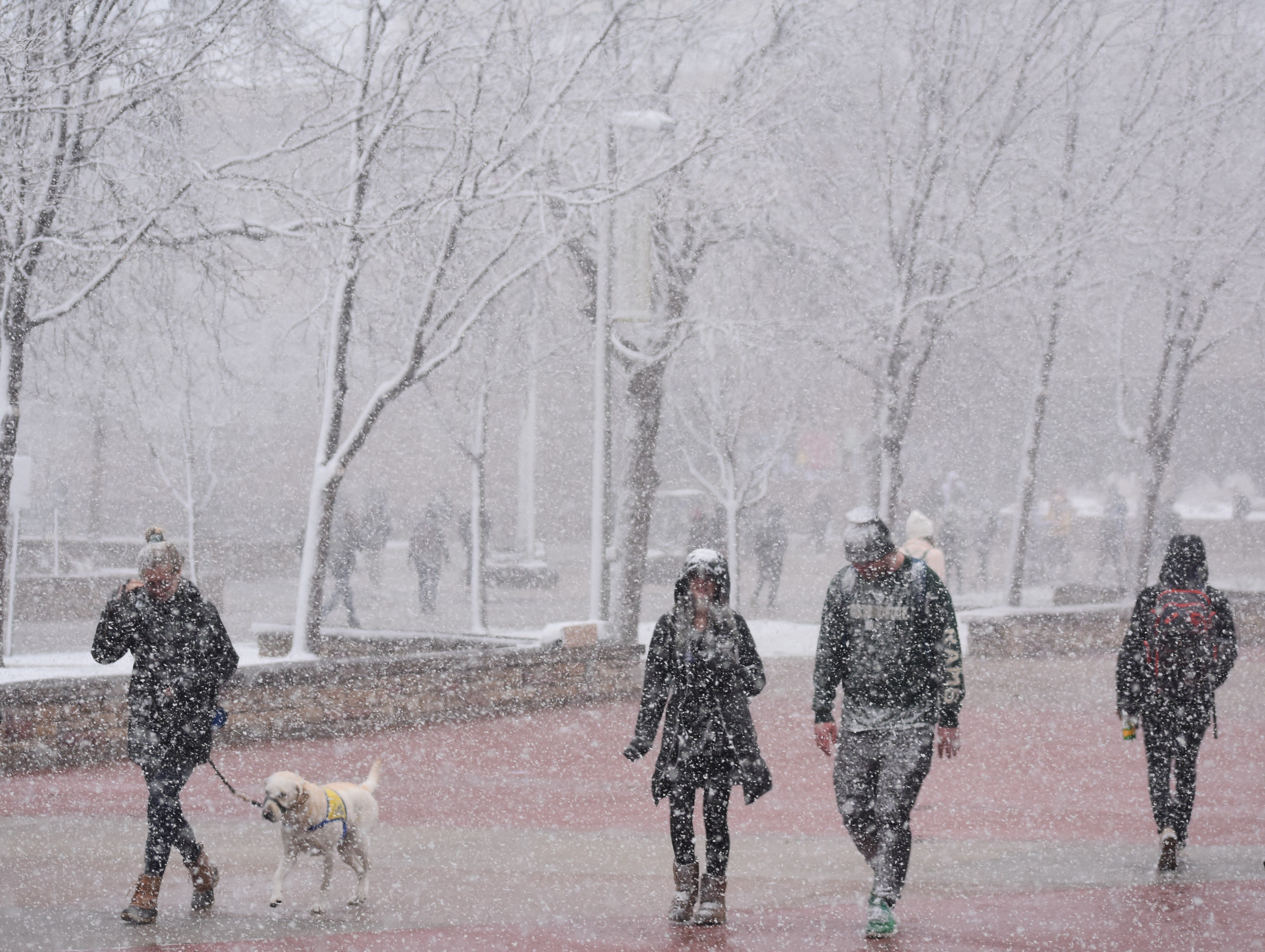 CSU students brave Wednesday's storm before classes were cancelled.