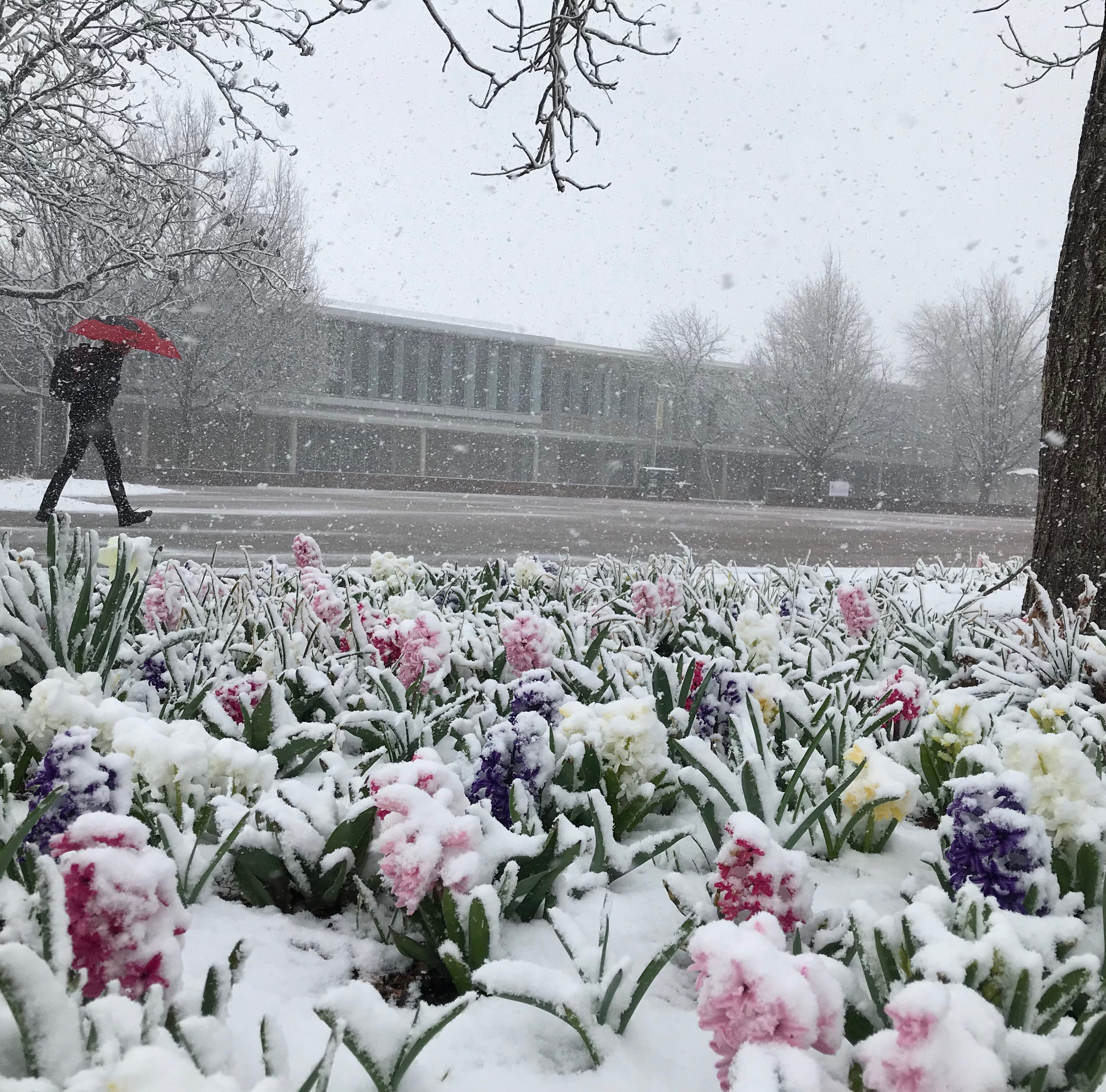 Is Colorado's second spring blizzard a bomb cyclone?