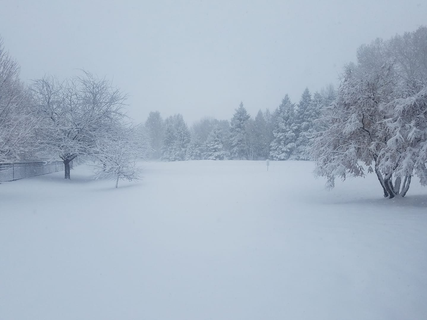 Scenes from the snowstorm of April 10, 2019 in Fort Collins and Northern Colorado
