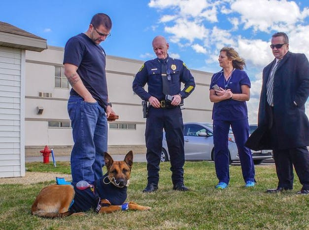 Green Bay Police dog Pyro and handler officer Scott Salzmann were visited by Green Bay Police Chief Andrew Smith (center) and Green Bay Mayor Jim Schmitt (far right) on Tuesday at the Animal Referral Center in Appleton. Also pictured, Dr. Lisa Peters.