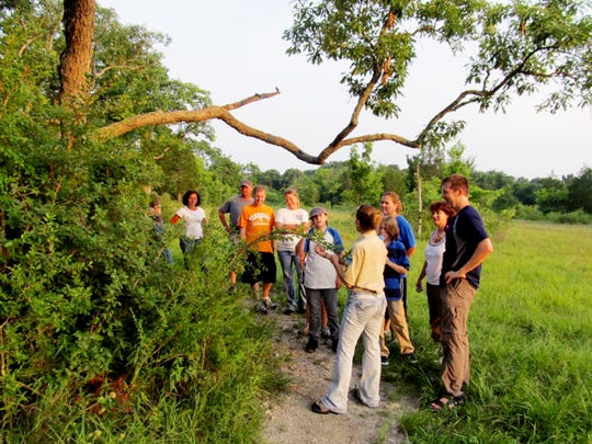 The Spring Thing event at Long Hunter State Park includes a cedar glade stroll.