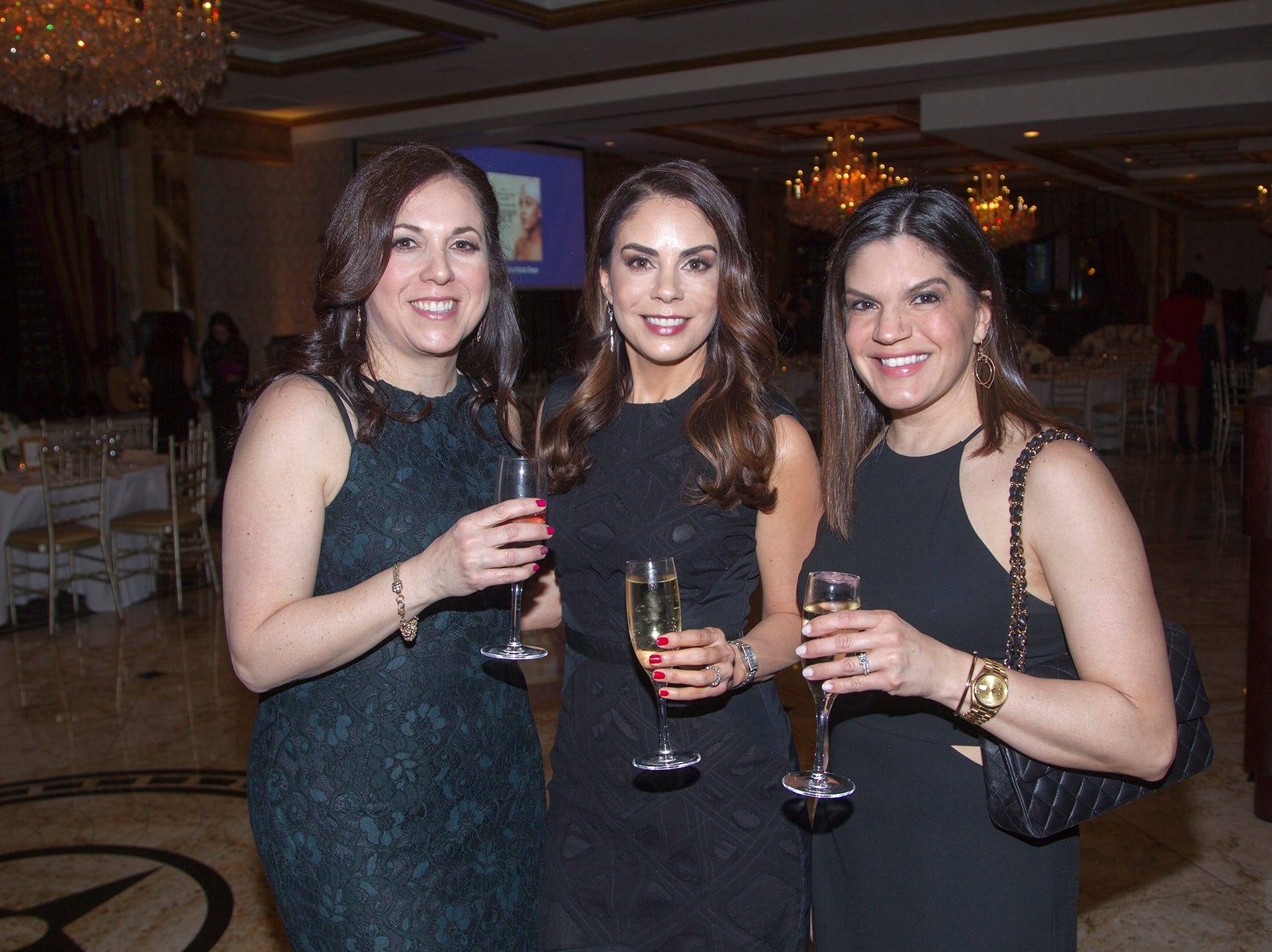 Debbie Cinquemani, Dana Missaghieh, Tracy Penski.  Upper Saddle River Education Foundation hosted its Town Night Out Gala at Seasons in Washington Twp. 04/06/2019