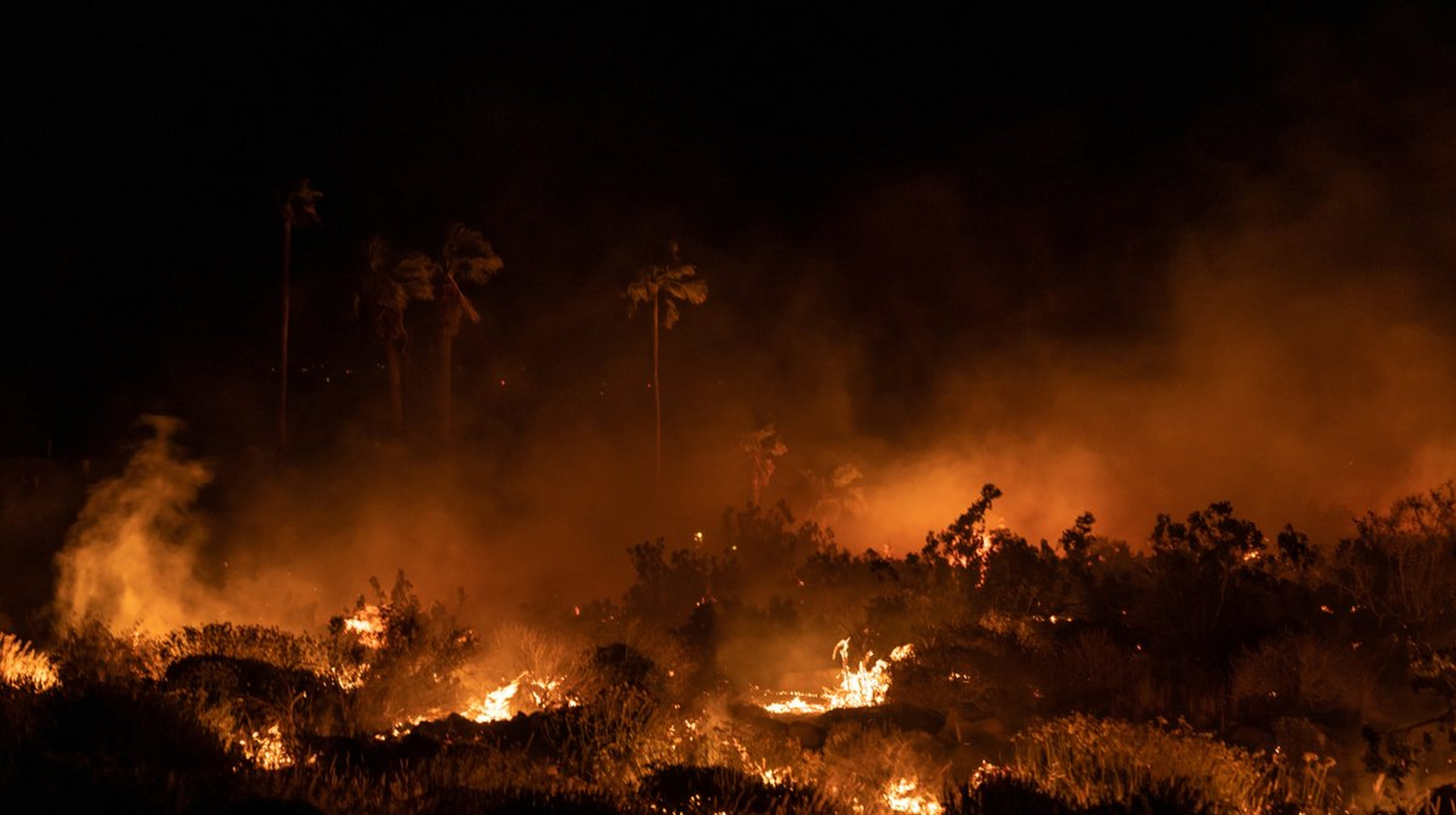 Palm Springs brush fire investigated
