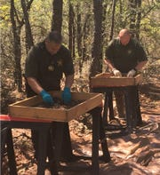 Okaloosa County Sheriff's Office deputies process skeletal remains found near the Okaloosa County-Santa Rosa County line.