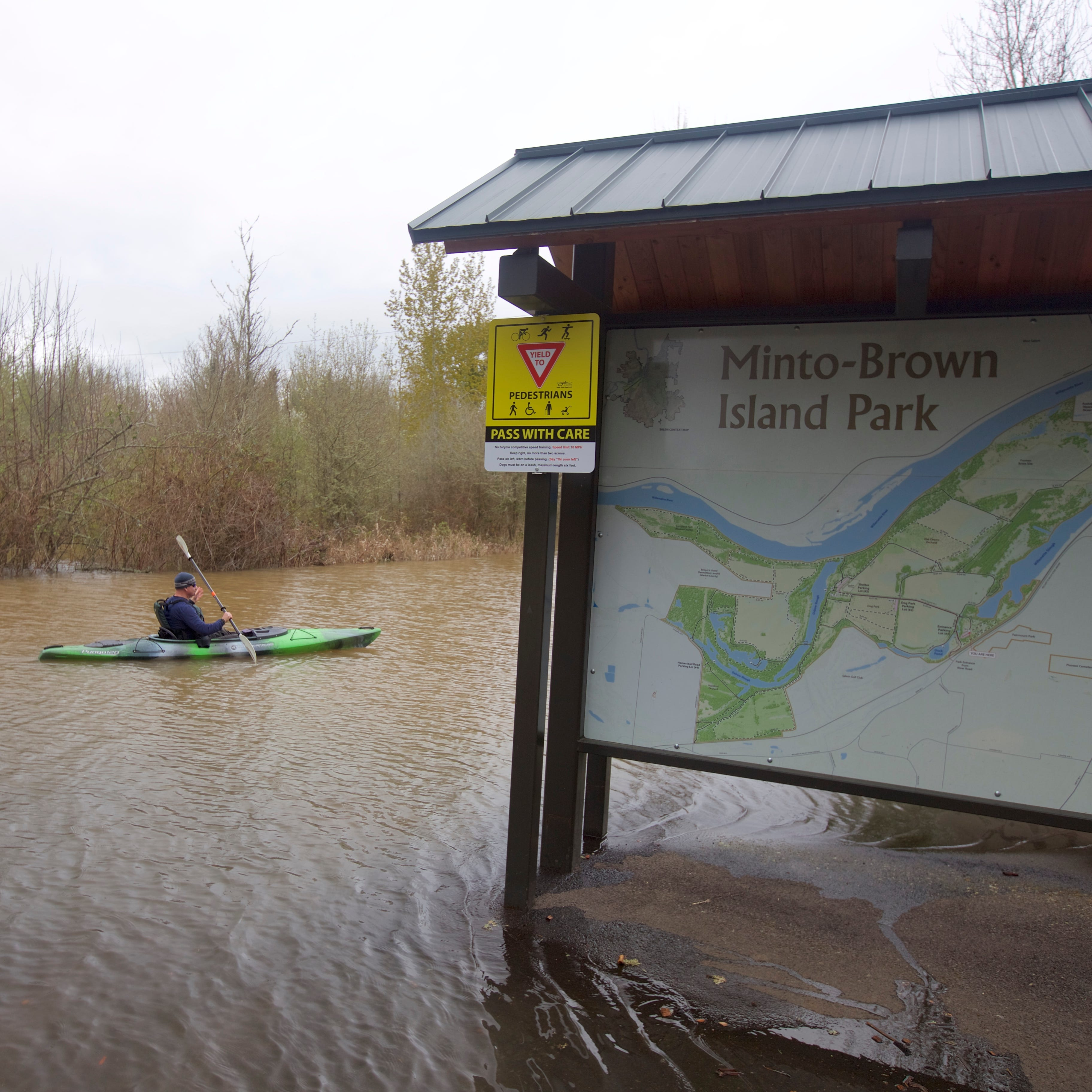As Willamette River rises, kayakers explore flooded forest at Salem's Minto-Brown Island