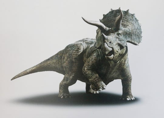 An artists rendering of a triceratops.