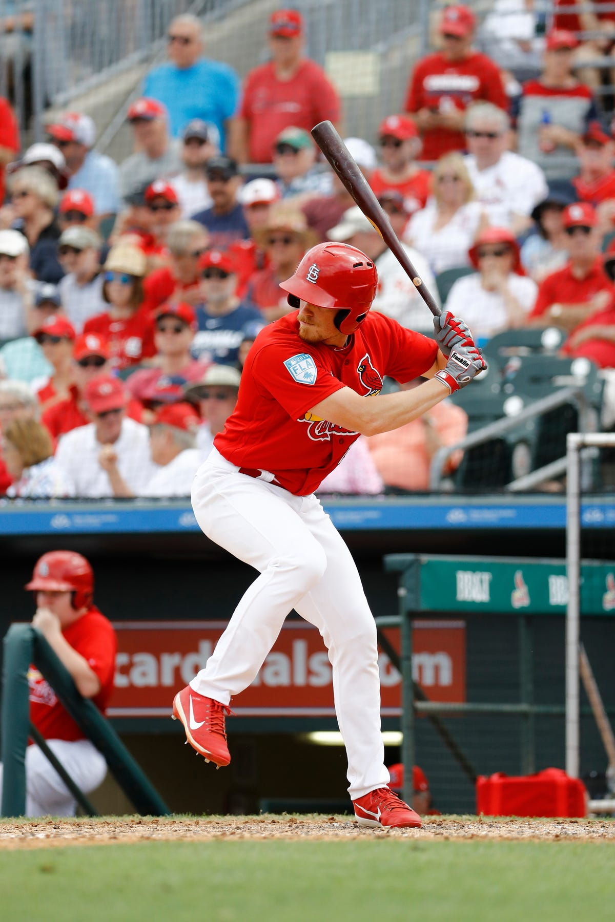 St  Louis Cardinals: The top prospects in Springfield