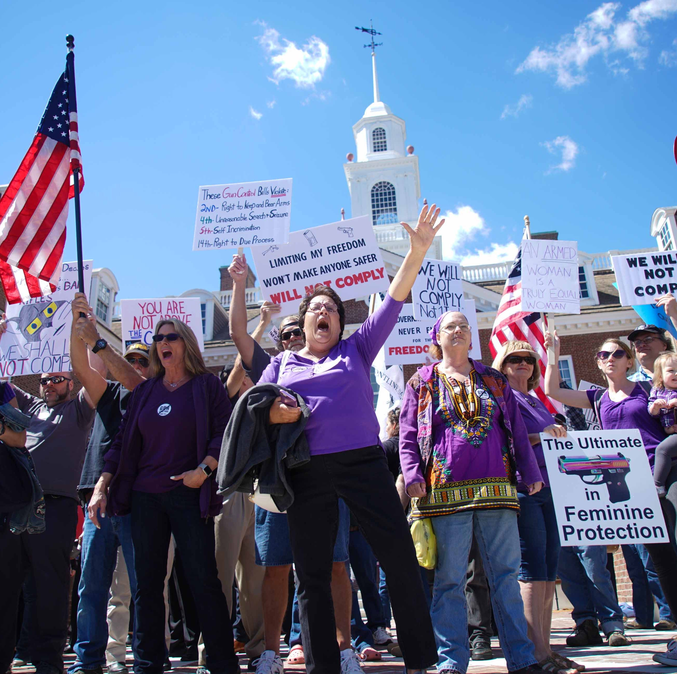Protesters swarm gun control rally as Democrats propose tougher gun laws