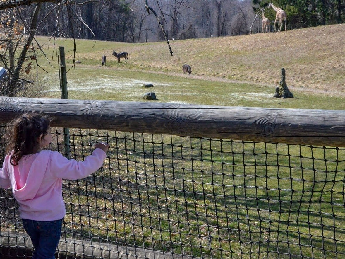 A young girl looks over the Wild Africa exhibit at Binder Park Zoo in 2018.