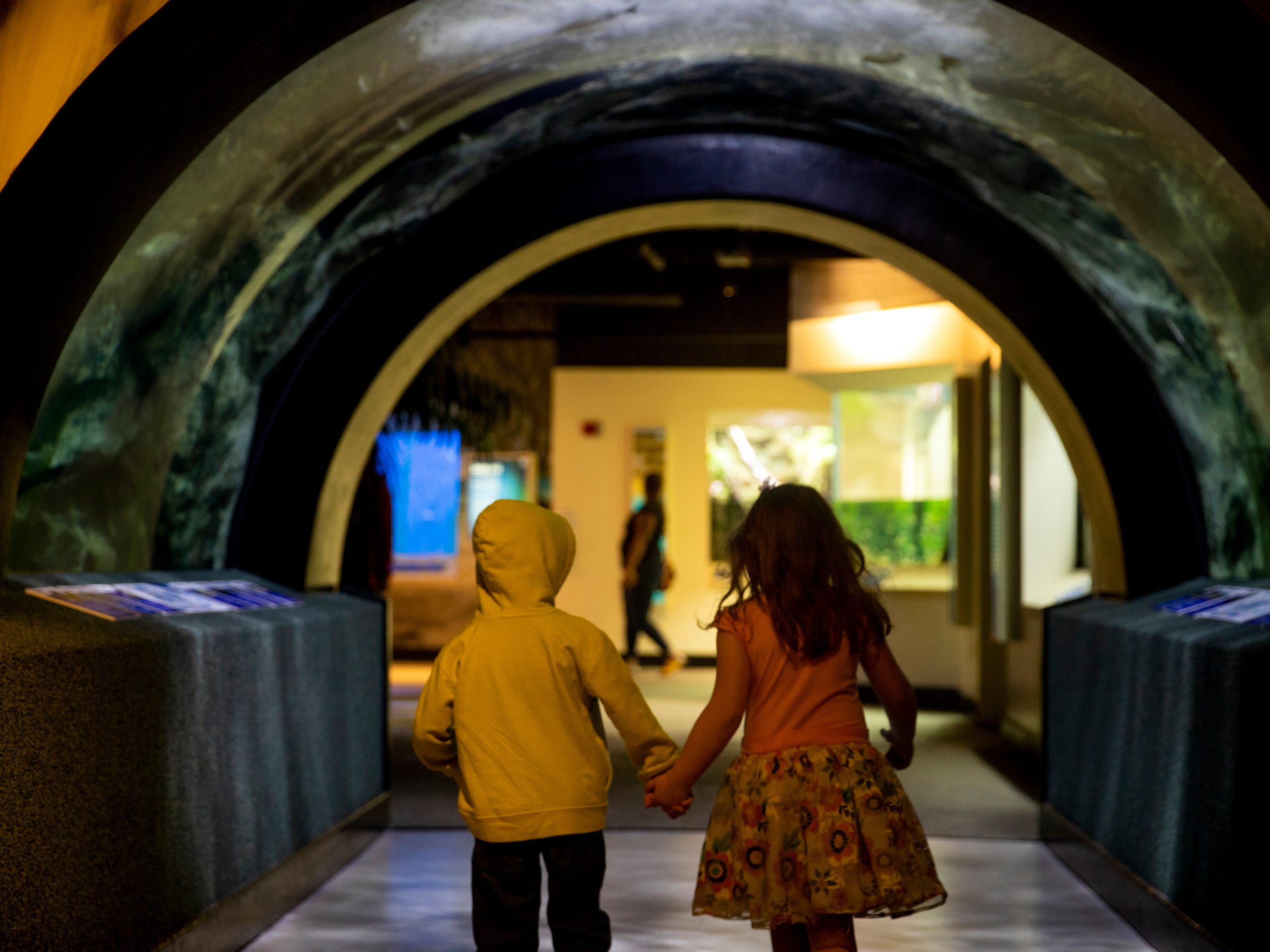Cousins Lucas Carpenter, 4, of Loveland, and Caroline Abt, 4, of West Chester, walk through Freshwater Falls Exhibit tunnel at Newport Aquarium Thursday, April 11, 2019 in Newport, Ky.