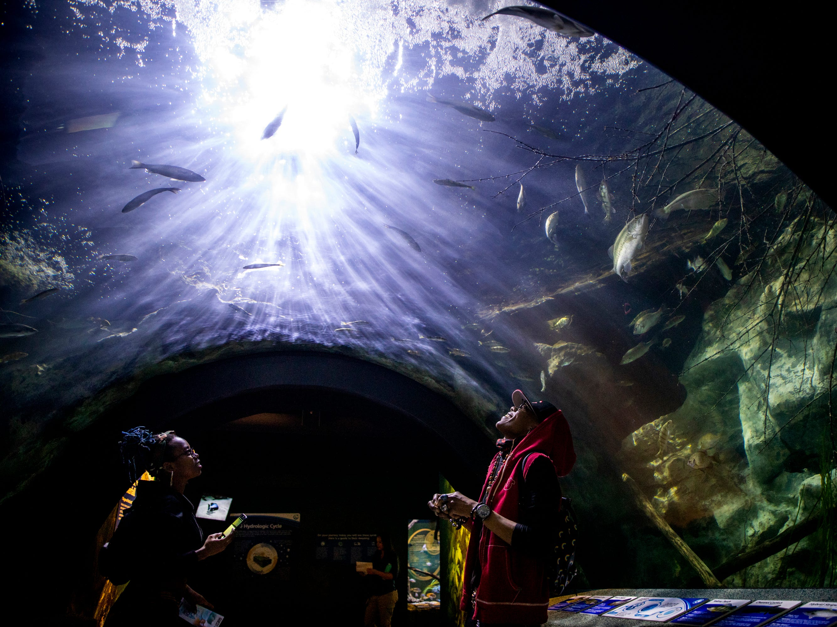 Cameshia Atwater and Trish Andrews, of Indianapolis, walk under the first tunnel of Newport Aquarium in the Freshwater Falls exhibit Thursday, April 11, 2019 in Newport, Ky. Beneath the Falls allows guests to experience what it is like underwater beneath a Kentucky waterfall with bass, black crappie and perch swimming around.