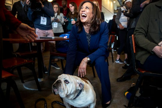 U.S. Sen. Kamala Harris, D-Calif., meets Griff, the living mascot of Drake University, while making a campaign stop on April 11, 2019, to Mars Cafe in Des Moines' Drake neighborhood.