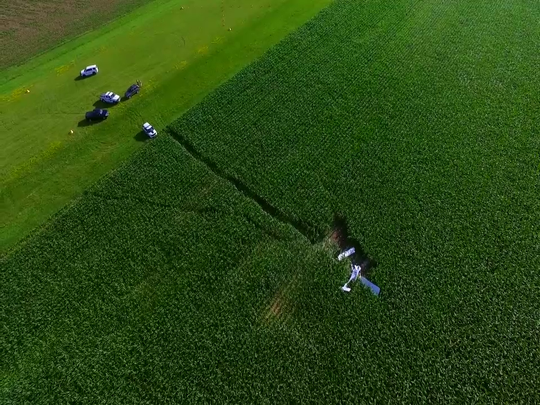 Federal investigators say a small plane crash that killed a 90-year-old pilot near an eastern Iowa airport was likely caused by the pilot's decision to allow his large dog near the flight controls.
