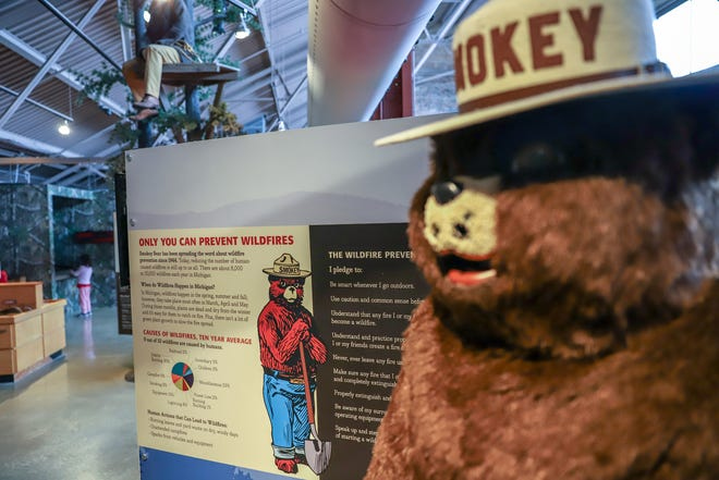 Smokey Bear, who informs people about the danger of wildfires, is celebrating his 75th anniversary Friday. Sites in Michigan and across the nation will be commemorating the milestone.