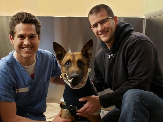 Animal Referral Center veterinarian Ryan Demianiuk with Pyro and his handler Green Bay Police officer Scott Salzmann.  Demianiuk performed Pyro's surgeries.