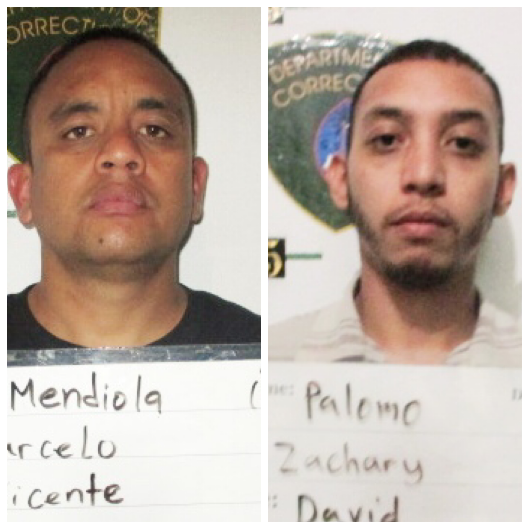 Brothers Zachary Palomo, Marcelo Mendiola allegedly forged checks for cash