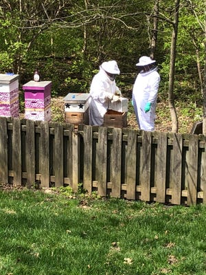 Jerry Gibbs raises bees on his property in Fishers