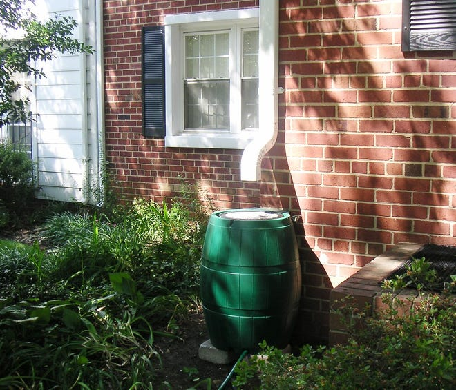 Rain barrels are an efficient and inexpensive way to keep your garden well-watered.
