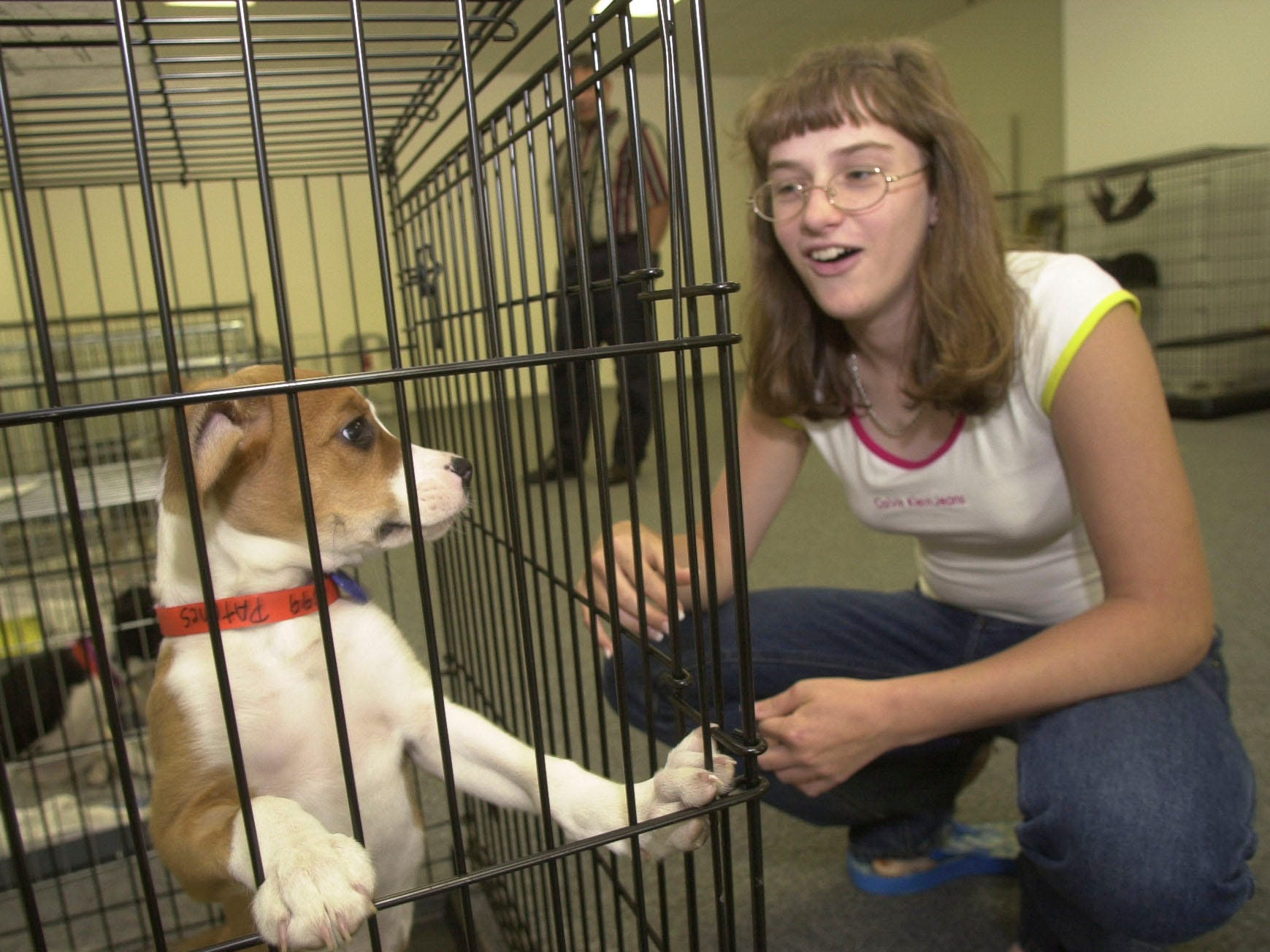 Nikkii Gervin, 13, meets a 12 week-old boxer-beagle mix named 'Patches' during  'Kroger Cares for Critters' pet adoption day Friday at Chapman Square, 4409 Chapman Highway. Kroger is partnering with the Humane Society of the Tennessee Valley in the two-day event which continues Saturday from 11am to 7pm. Pets can also be brought in to be microchipped, a high-tech way to permanently identify a animal