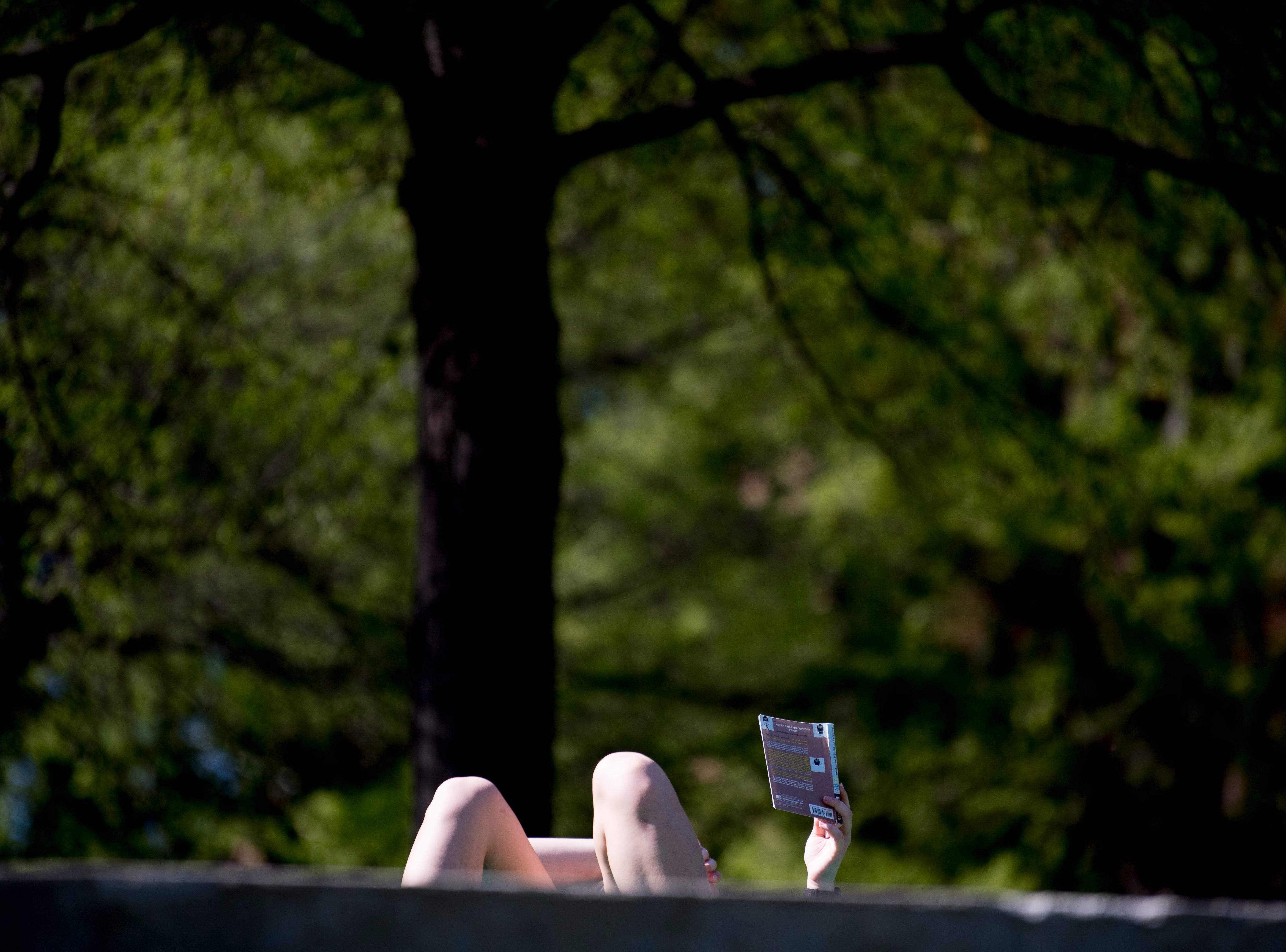 A student reads a book in the amphitheater lawn on the UTK campus in Knoxville, Tennessee on Wednesday, April 10, 2019.