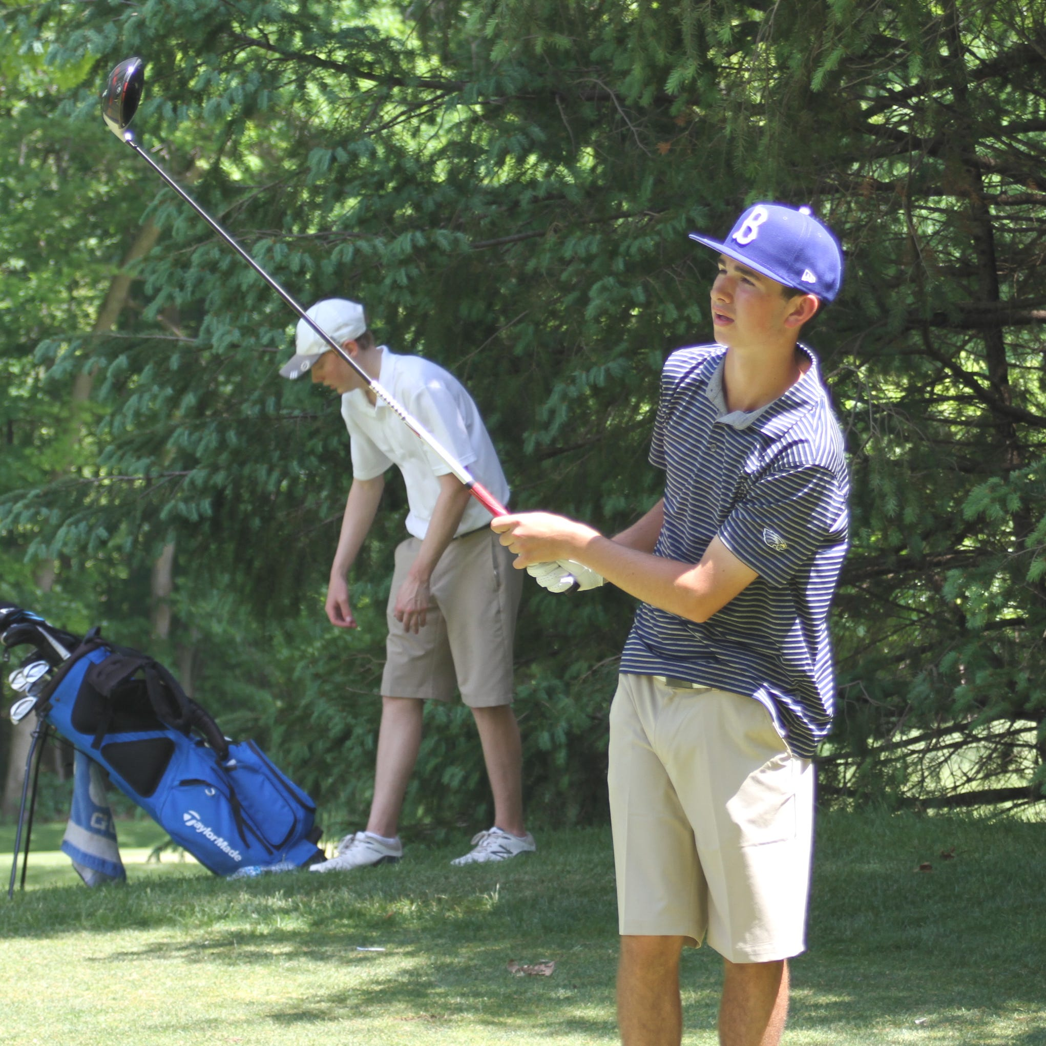 A look at Livingston County's 2019 boys golf teams