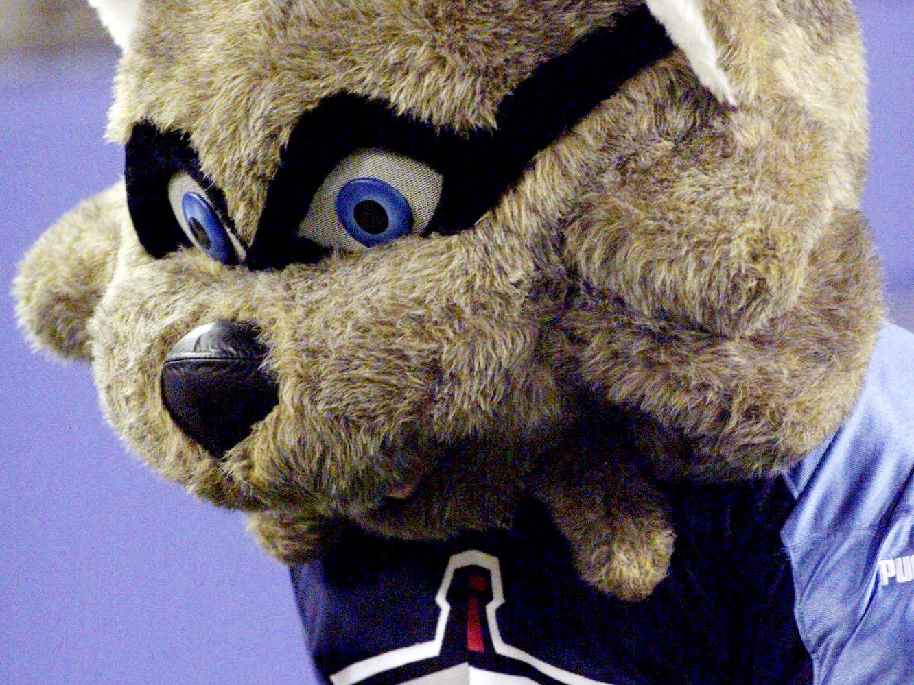 Tennessee Titan's new mascot, T-Rac, is ready for the very game at Adelphia Coliseum during a pre-season game against the Atlanta Falcons Aug. 27, 1999.