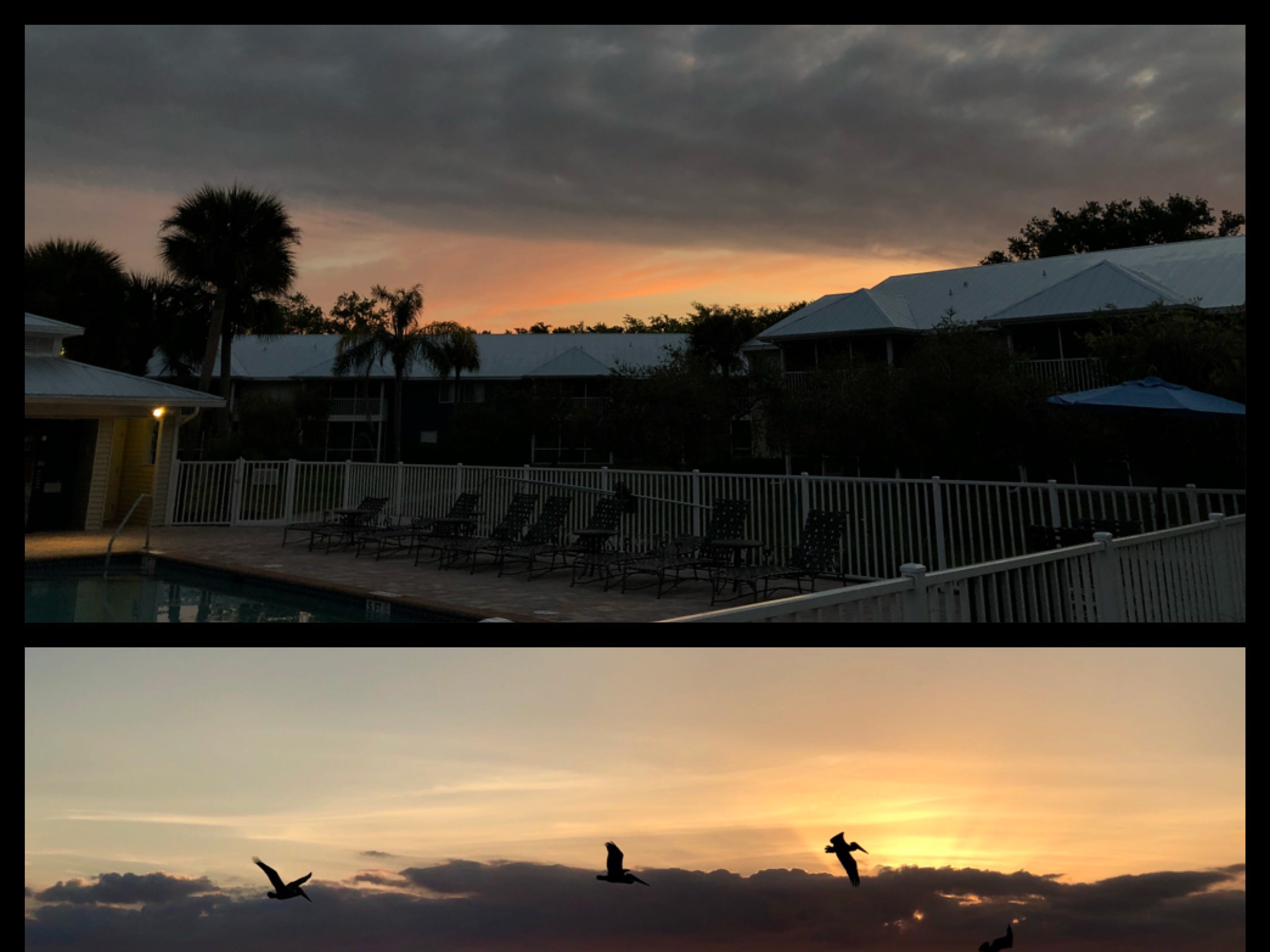 This is love project, capturing moments around the sunrise and sunset, is my attempt to pause and be present in my life and to share the sentiment of my surroundings: often abundant beauty Southwest Florida offers.I would like to invite you to share your pictures and stories. If you found an image from the attic, please share with us what memory it brought. Please send us your pictures and contact information to LoveProject@gannett.com. Attn: visuals. Selected pictures will be posted on our platforms periodically.