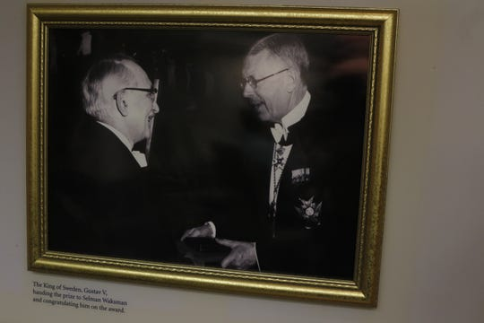 The Nobel Prize was presented to Rutgers professor Selman Waksman, who ran the lab where streptomycin was discovered in 1943, by King Gustav V  of Sweden.