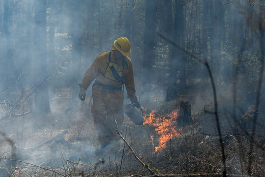 Scott Smith of the Maryland Department of Natural Resources helps to light a controlled burn in the Nassawango Creek Preserve near Salisbury on Thursday, April 11, 2019.