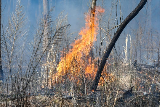 A wildfire in Indian Pass, about 40 miles east of where Hurricane Michael made landfall in October, has spread to more than 200 acres overnight but is mostly contained.