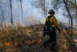 Get a glimpse inside a managed fire on the Nassawango Creek Preserve near Salisbury. Scientists say fires help restore plants and reduce risk.