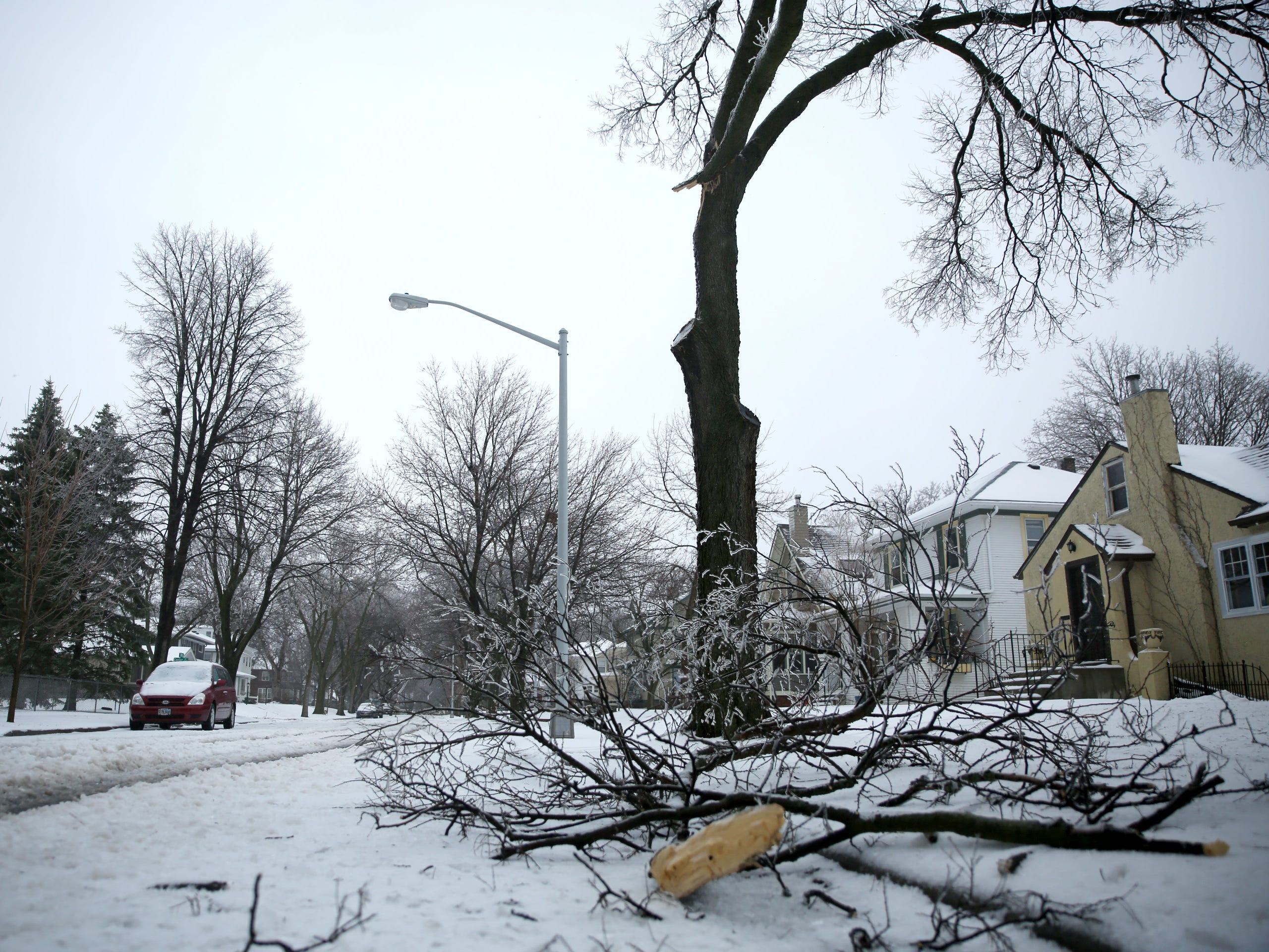 Multiple tree limbs, branches and stick lay scattered on residential streets in Sioux Falls on Thursday, April 11. The results are a combination of ice weighing down branches and strong winds during the spring blizzard.