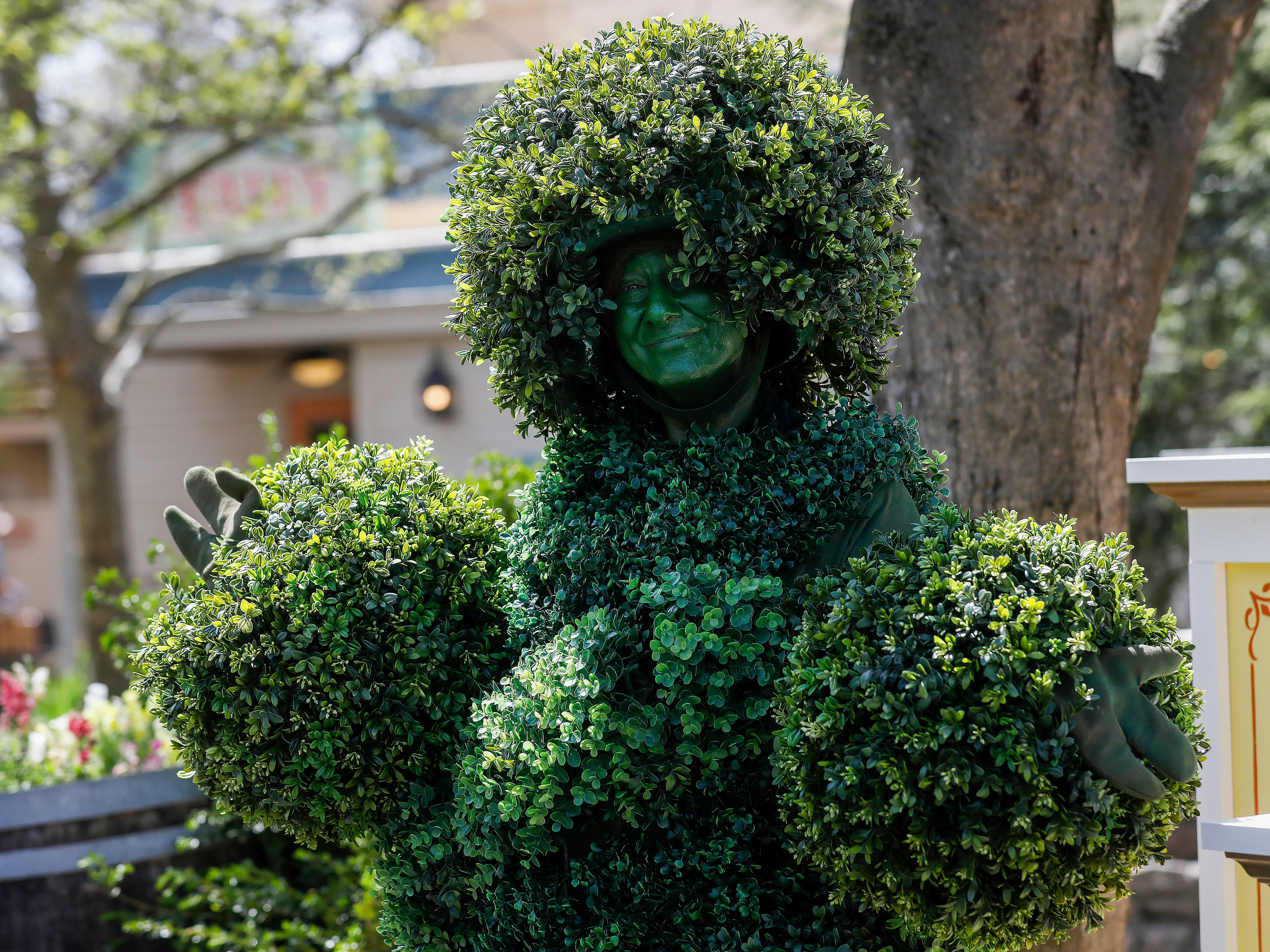 A living tree greets patrons as they walk through the entrance during the Festival of Wonder on Wednesday, April 10, 2019 at Silver Dollar City. The event runs Wednesdays through Sundays, April 10-28.
