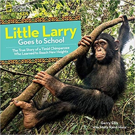 Little Larry Goes to School: The True Story of a Timid Chimpanzee Who Learned to Reach New Heights by Gerry Ellis with Mary Rand Hess