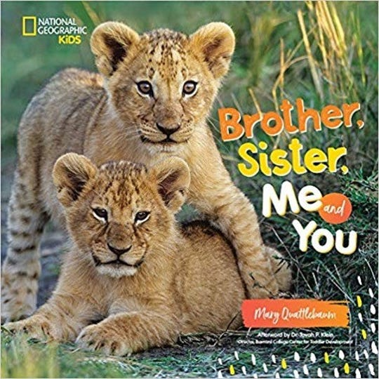 Brother, Sister, Me and You by Mary Quattlebaum