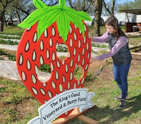 Lauren Morath positions their large strawberry photo board during the grand opening of their strawberry field Thursday morning.
