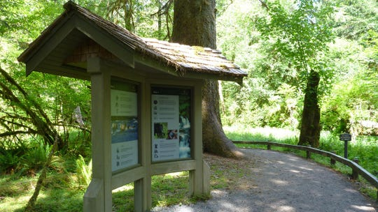 The Hoh Developed Area in Olympic National Park includes a visitor center, trails, camping areas, an amphitheater and informational signage such as this.
