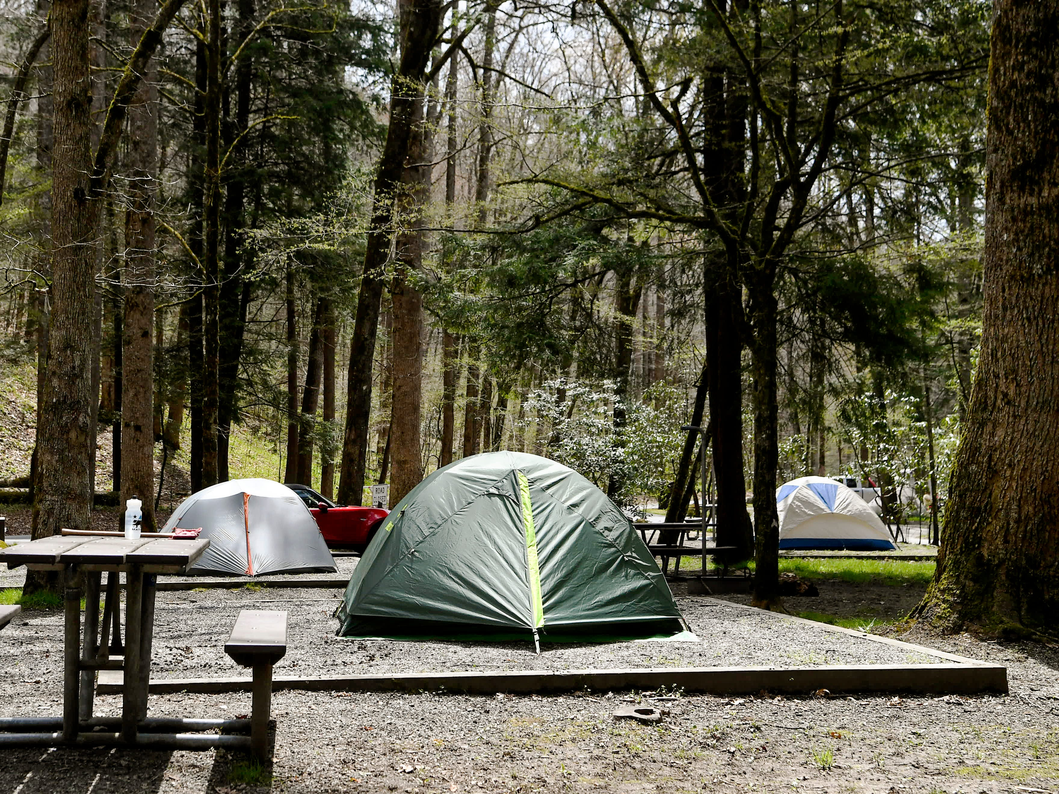 Great Smoky Mountains campgrounds, facility openings delayed this spring due to shutdown