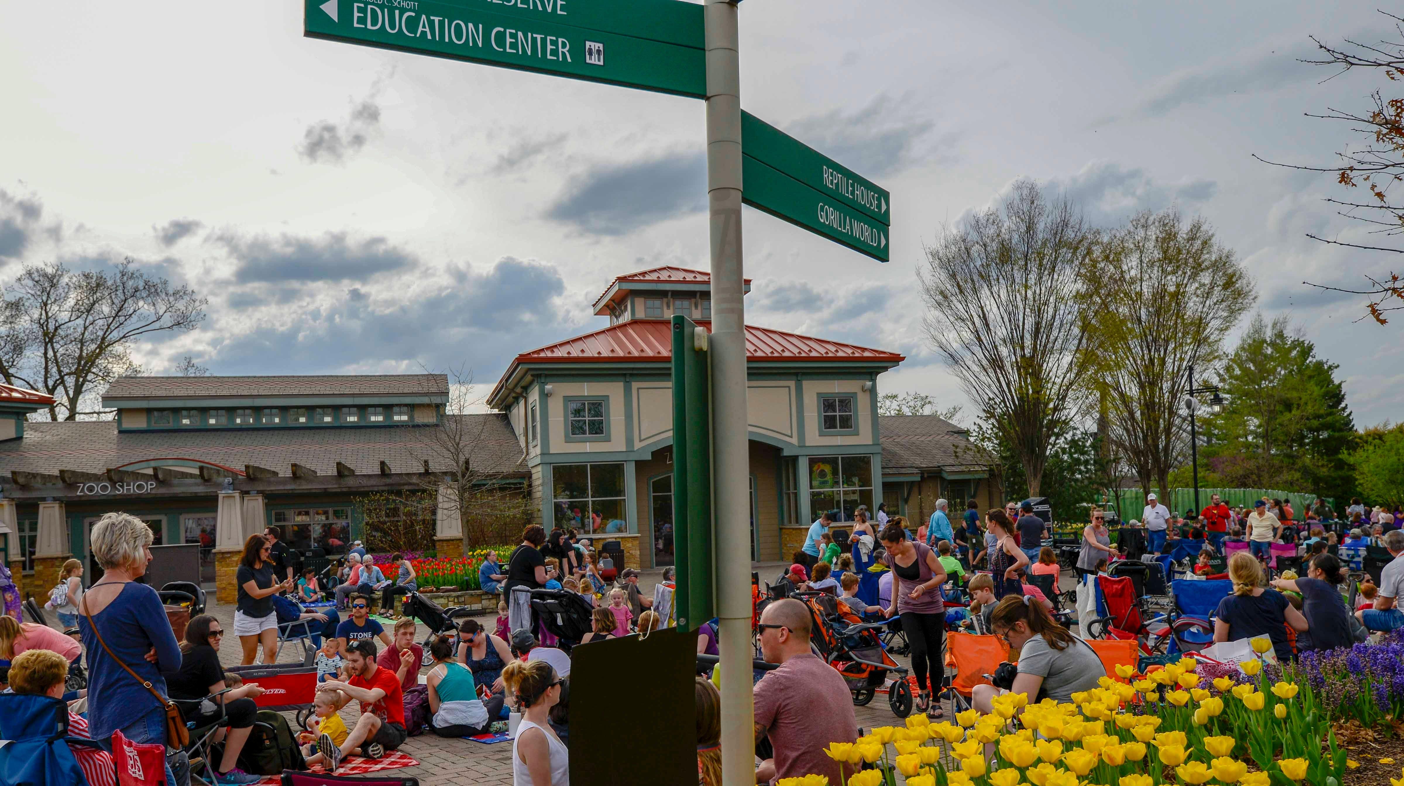PHOTOS: Tunes & Blooms at Cincinnati Zoo is in full bloom