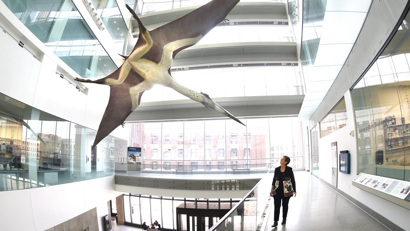 Um Museum Of Natural History Shines In New Home