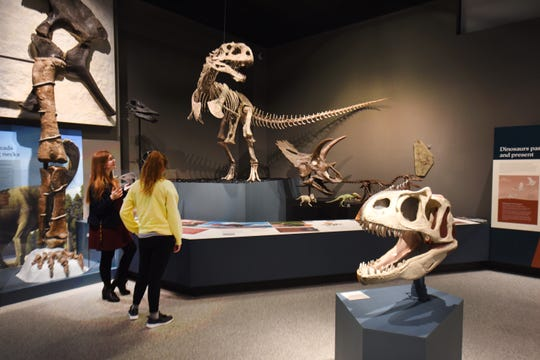 Student docents Kellyn McKight (left) and Lucy Rapp check out the Majungasaurus display at the Evolution: Life through Time exhibit at the University of Michigan's Museum of Natural History.