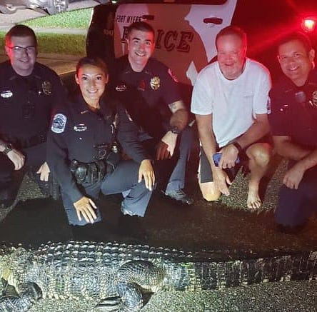 Fort Myers family get an unexpected 8-foot-long visitor at 2 a.m.