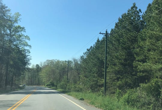 A stretch near the 200 block of New Harrison Bridge Road in the Simpsonville area is pictured on April 10, 2019. A number of abandoned cats were found in this area in March, according to Greenville County Animal Control.