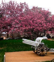 This Jan. 25, 2017, photo shows one of the two World War I cannons that had been on display for decades outside the Mississippi Capitol in downtown Jackson, Miss.