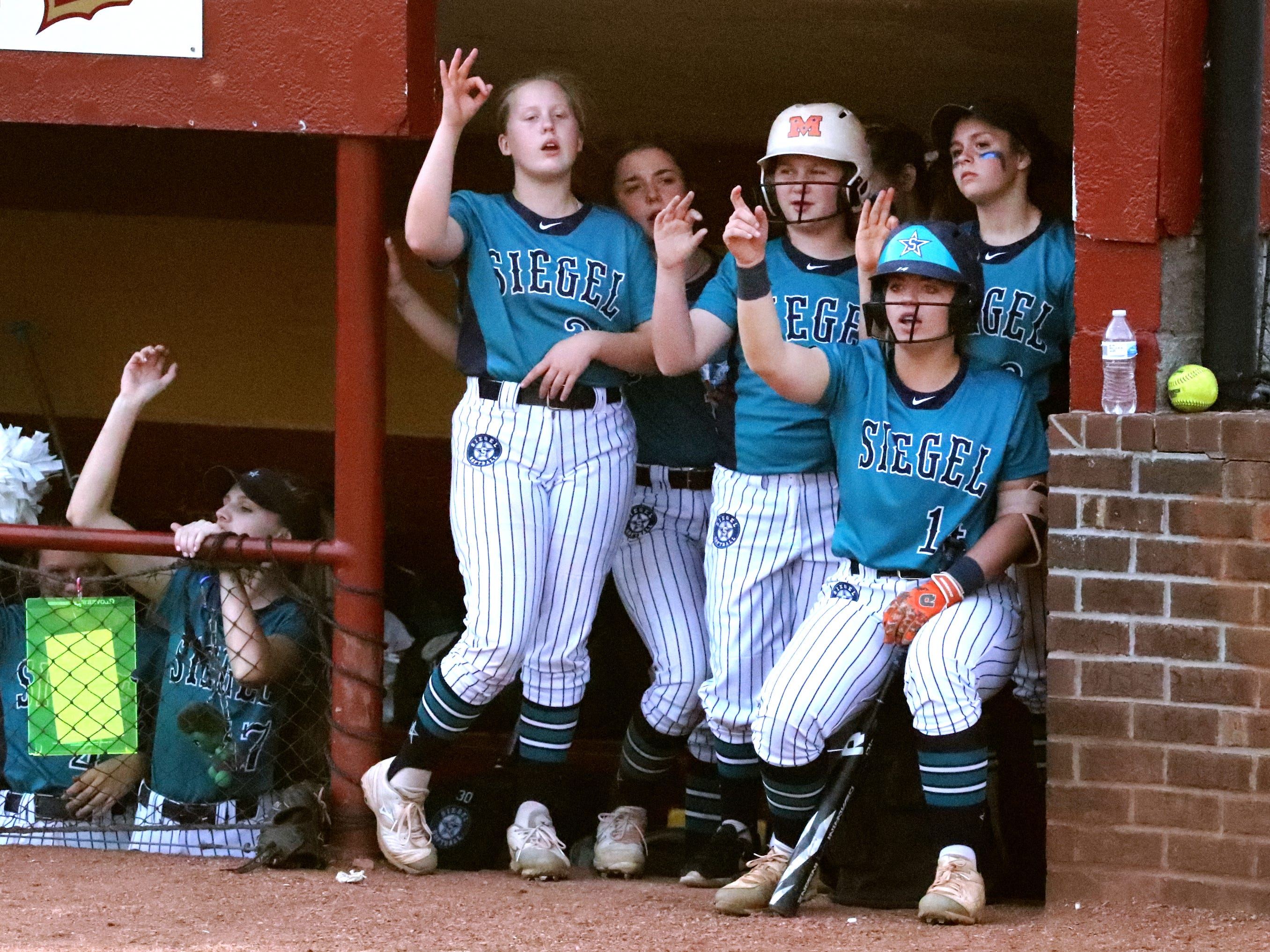 Siegel players in the dugout cheer on their team during the game against Riverdale on Thursday April 11, 2019, at Riverdale.