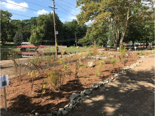 After: Rain garden captures and filters runoff, keeping pollutants from entering waterways.